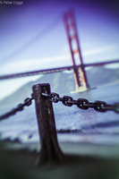 SanFranciscoBridges#8